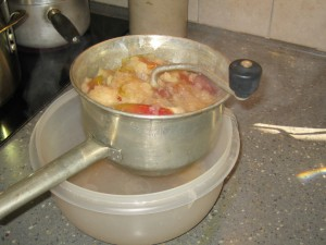 cooked_apples_foodmill